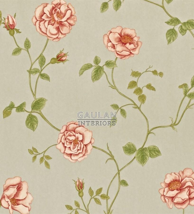 Papel pintado Sanderson A Painters Garden - DAPGRO103