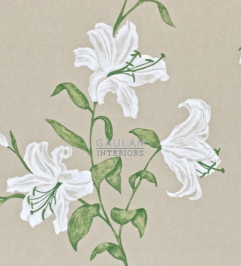 Papel pintado Sanderson A Painters Garden - DAPGSE102