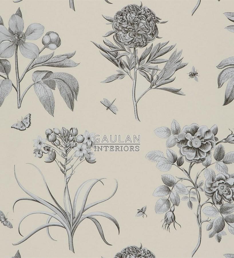 Papel pintado Sanderson Parchment Flowers - DPFWER106