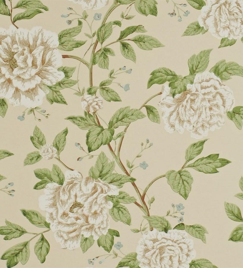 Papel pintado sanderson pemberley dpempt103 gaulan - Papel pintado exclusivo ...