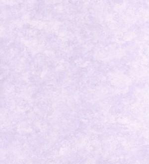 Stucciane 38 118361