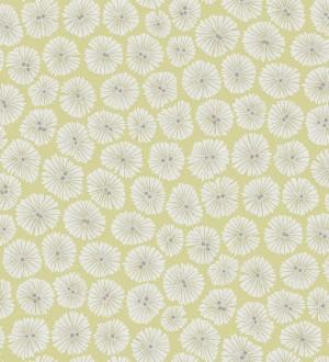 Papel pintado flores pequeñas modernas blanco fondo verde melón Nicolette 565063