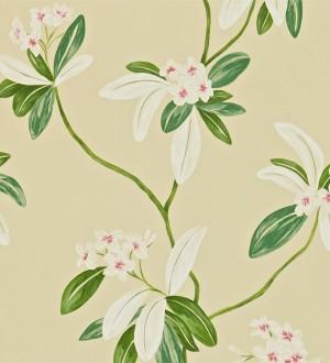 Papel pintado flores y hojas delgadas vintage al óleo Givanna 565355
