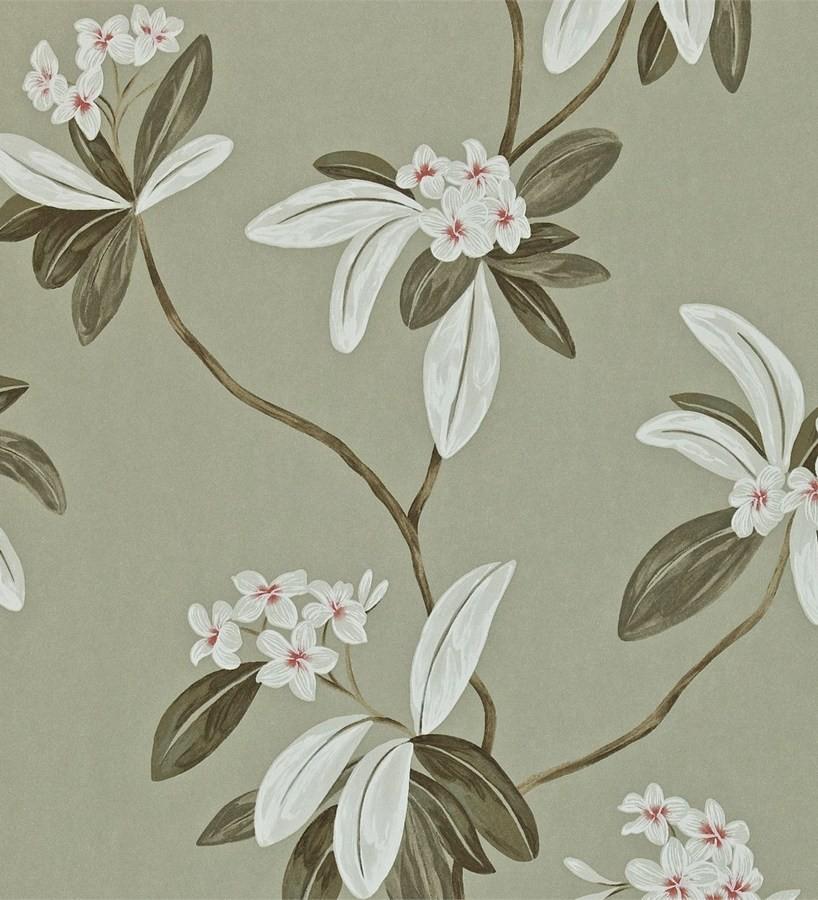 Papel pintado flores y hojas delgadas vintage al óleo Givanna 565357
