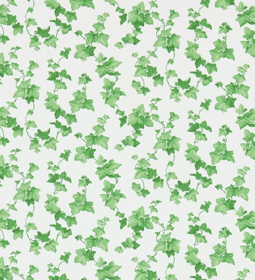 Papel pintado hojas de enredadera artísticas verde intenso Rivina 565491