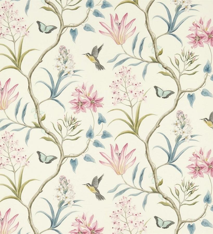 Papel pintado mariposas y colibrís con naturaleza artística Dorothy 565529