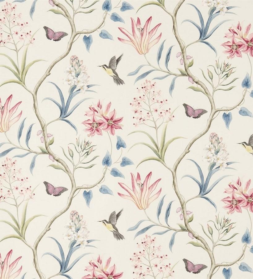 Papel pintado mariposas y colibrís con naturaleza artística Dorothy 565530