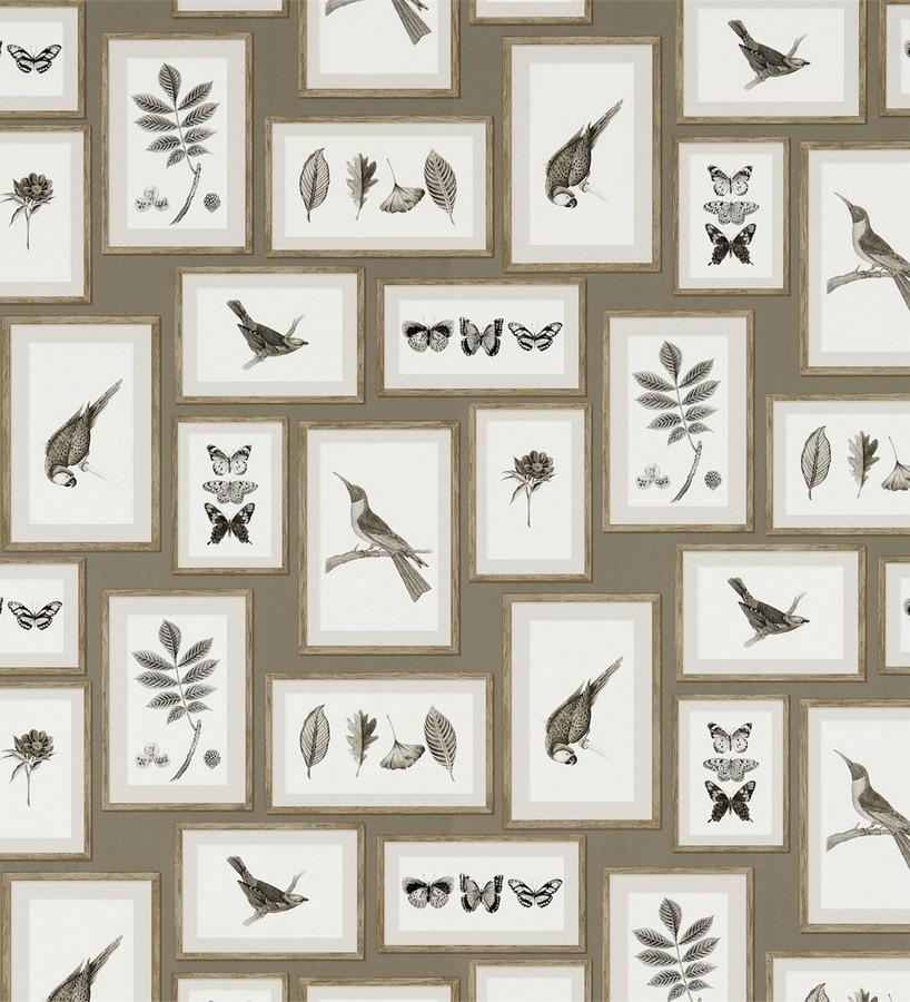 Papel pintado collage inglés de hojas y pájaros enmarcados Moray 565540