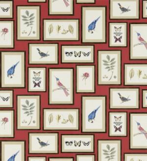 Papel pintado collage inglés de hojas y pájaros enmarcados Moray 565541