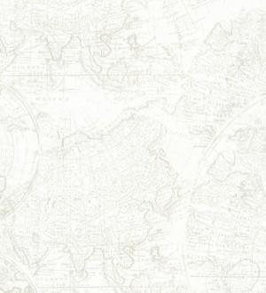 Papel pintado mapa cartográfico vintage fondo nude claro Esquivel 7404