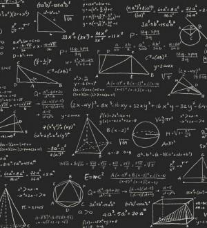 Papel pintado pizarra ecuaciones matemáticas blanco fondo negro Tahoma 8344