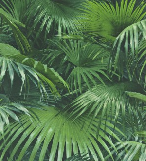 Papel pintado hojas de palmera de interior estilo tropical Managua 8805