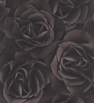 Papel pintado rosas grandes modernas gris visón oscuro Cídipe 8812