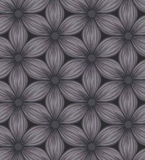 Papel pintado de margaritas nórdicas gris oscuro fondo negro Amarela 421528