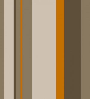 Papel pintado rayas asimétricas tricolor Raya Skate Urban 421544