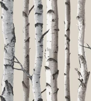 Papel pintado troncos de árboles de bosque nórdico gris fondo beige pálido Nordic Nature 421567