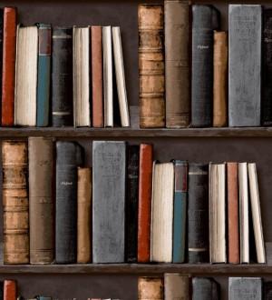 Papel pintado estantería de libros antiguos gris verdoso fondo gris visón oscuro Classic Novels 421593