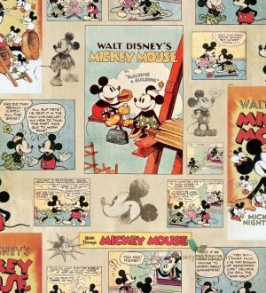 Mickey Moments 120093
