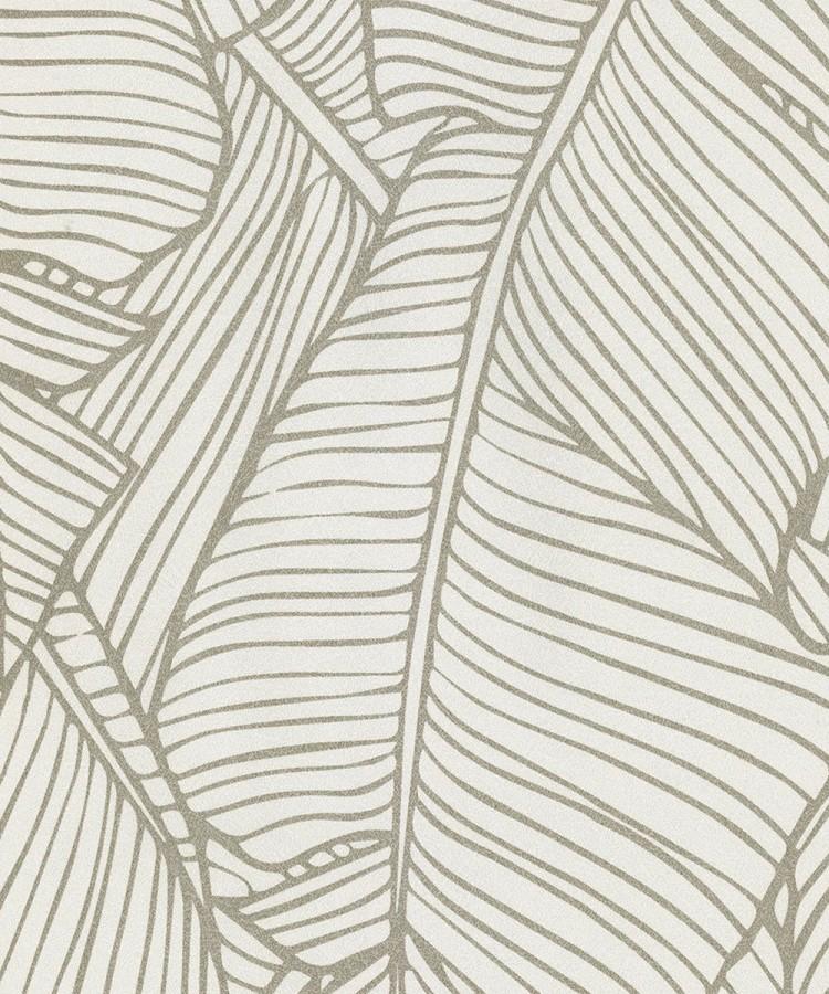 Papel pintado hojas grandes modernas estilo tropical Medellin 121013