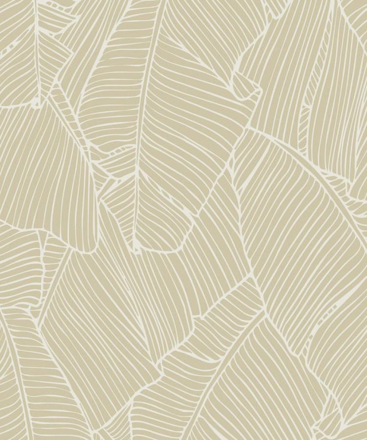 Papel pintado hojas grandes modernas estilo tropical Medellin 121014