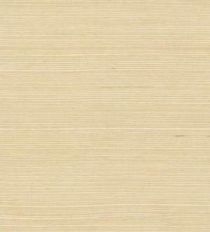 Papel pintado Kemen Grasscloth Volume II - VG4400