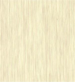 Papel pintado Kemen Grasscloth Volume II - VG4428