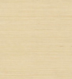 Papel pintado York Grasscloth Volume II - VG4400