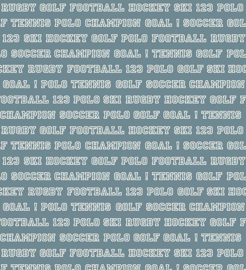 Papel pintado Papel pintado nombres de deportes fondo azul grisáceo Champion Goal 677052