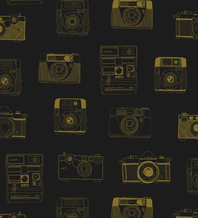 Papel pintado cámaras de fotos estilo vintage Vintage Pics 677191