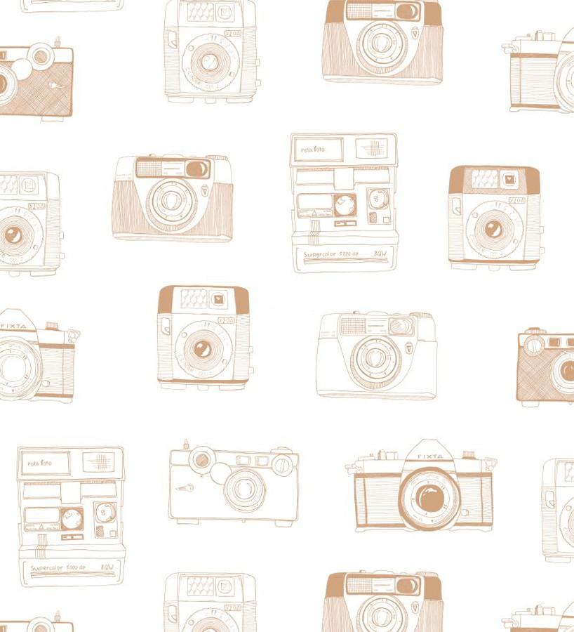 Papel pintado cámaras de fotos estilo vintage Vintage Pics 677215