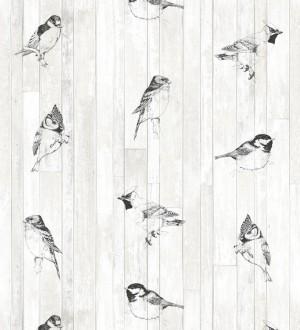 Tropic Birds 677254