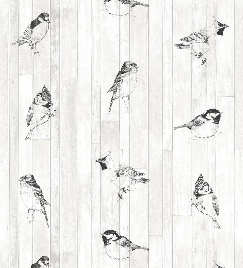 Papel pintado pájaros tropicales blanco y negro Tropic Birds 677254