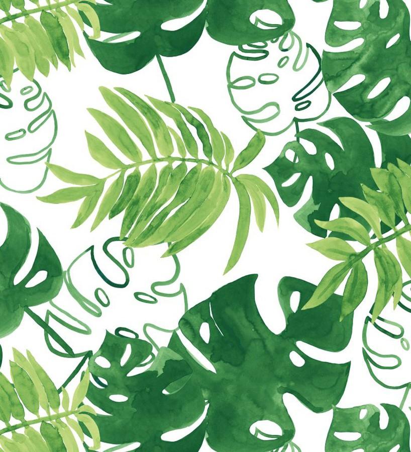 Papel pintado hojas tropicales fondo blanco Paramaribo 677289
