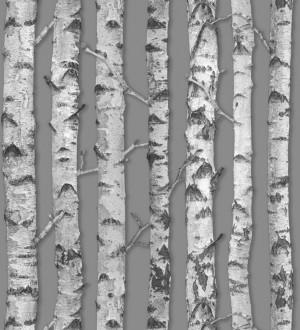 Papel pintado troncos de árboles estilo nórdico Baltic Hills 677294