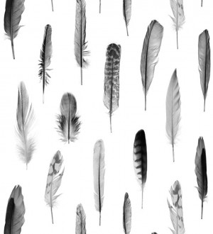 Papel pintado plumas grises fondo blanco Bohemian Rain 677299