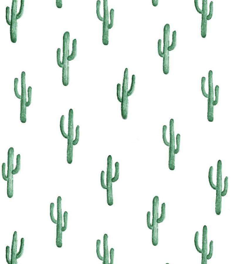 Papel pintado plantas de cactus Western Land 677302