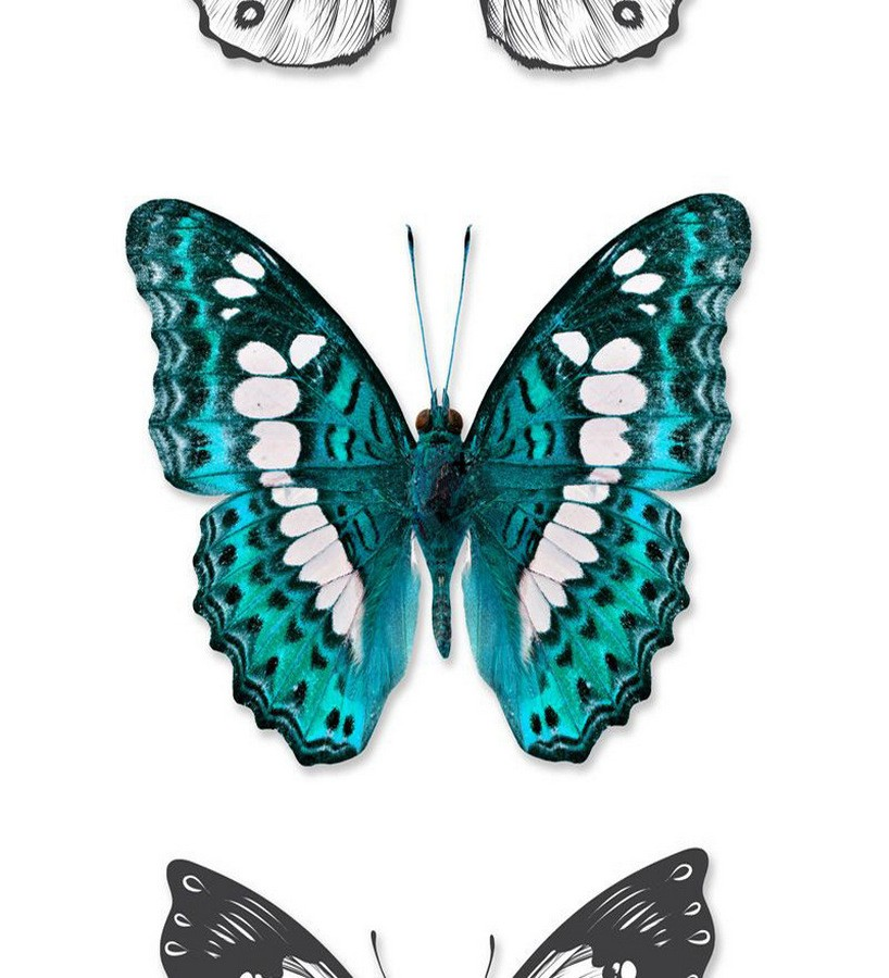 Papel pintado mariposas grandes estilo tropical Pretty Butterfly 677315