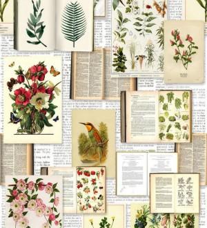 Papel pintado libro de colección de plantas Plants Book 677316