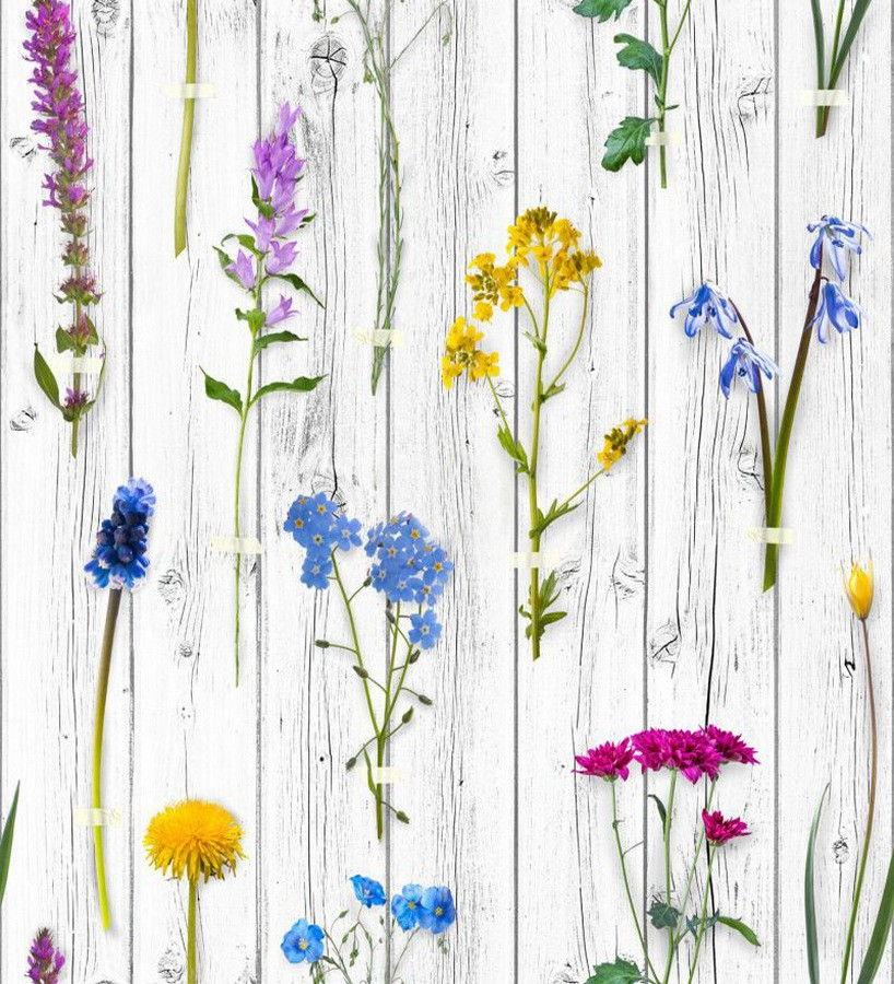 Papel pintado Fleurs du Jardin 677319 Fleurs du Jardin 677319