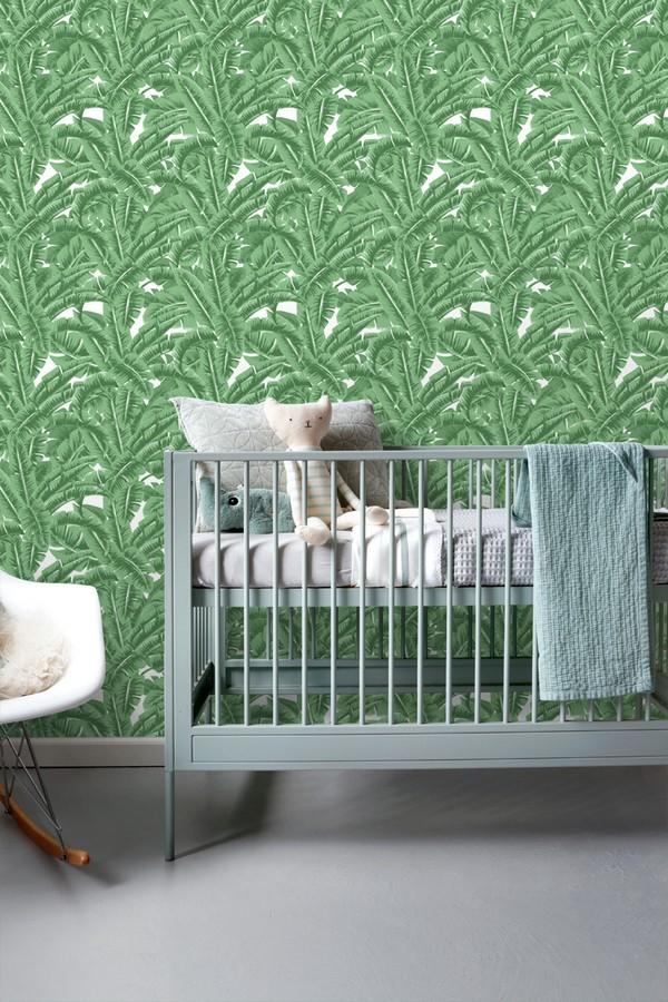 Papel pintado hojas de jungla estilo tropical Paipe Jungle 679027