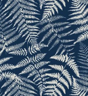Papel pintado hojas de bosque tropical Boreal Forest 679043