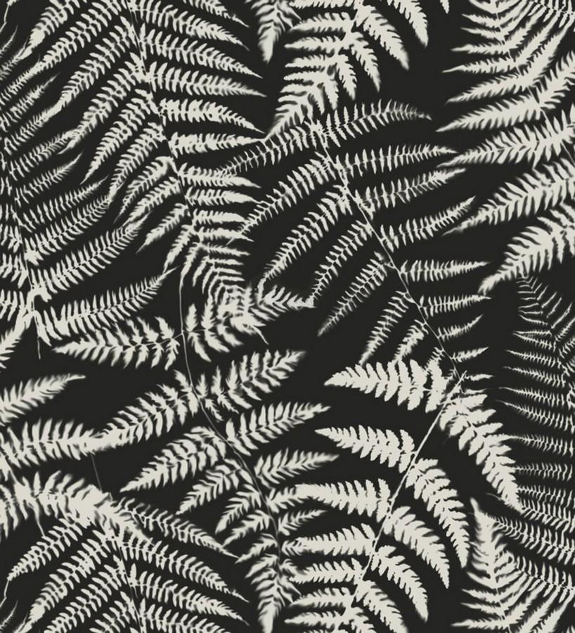 Papel pintado hojas de bosque tropical Boreal Forest 679044