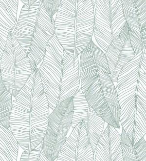 Papel pintado hojas modernas estilo tropical Manila Tropical 679053