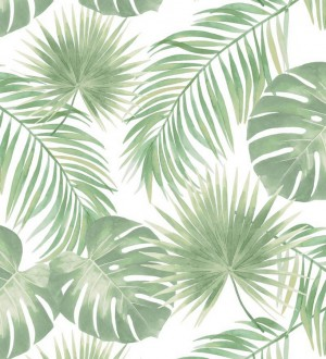 Papel pintado hojas tropicales Bahamas Island 679055