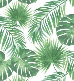 Papel pintado hojas tropicales Bahamas Island 679056