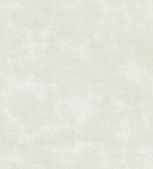 Vanila Texture 679060