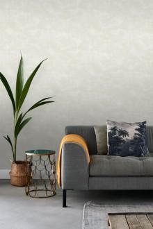 Vanila Texture