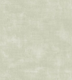 Vanila Texture 679061