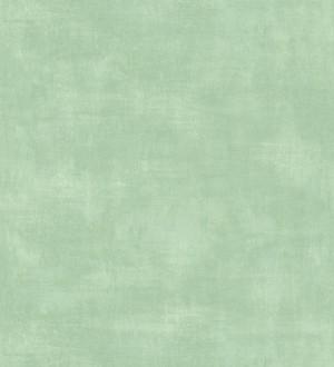 Vanila Texture 679062
