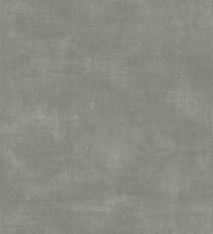 Vanila Texture 679064